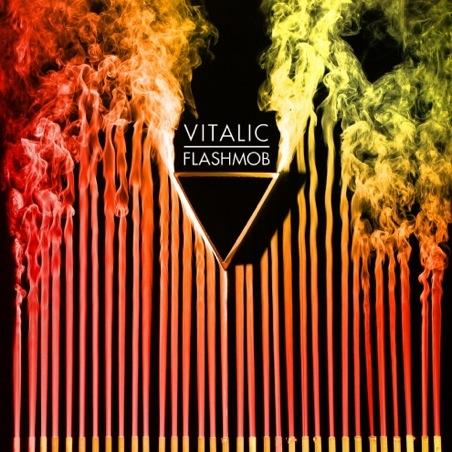 Chronique CD : Flashmob - Vitalic