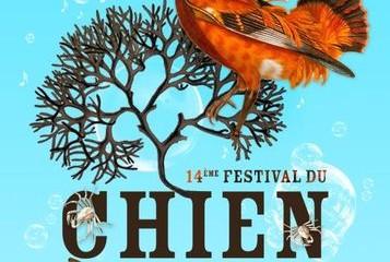 festival-chien-plumes1
