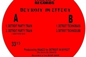 Detroit-In-Effect-Detroit-Party-Train1