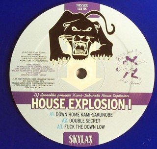 chronique : DJ Sprinkles presents Kami-Sakunobe House Explosion