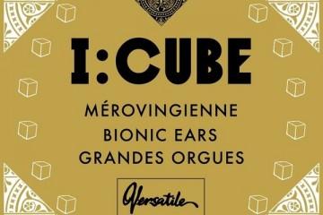 I-Cube_Merovingienne1