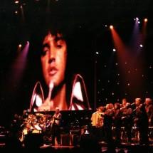 Elvis en concert au Zénith de Paris