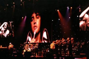 Elvis en concert au Zénith de Paris : compte rendu