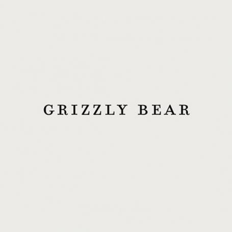Grizzly Bear - Sleeping Ute