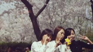 Vidéo : Richard Walters - Blossom