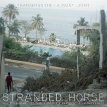 Stranded Horse