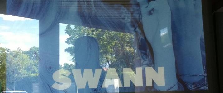 Swann en concert à La Marquise à Lyon