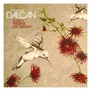 Dominique Dalcan - A quoi pensent les oiseaux