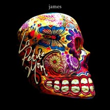 James, entre jouissance et spleen