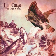 Retour vers The Coral