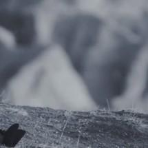 Vidéo : Gruff Rhys – Lost Tribes