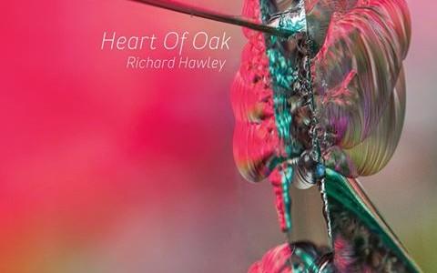 Richard Hawley - Heart of Oak