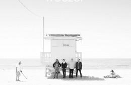 The Weezer - The White Album