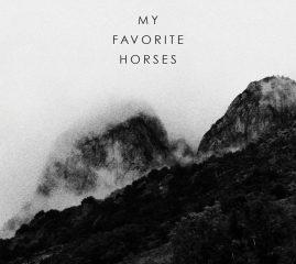 My Favorite Horses - Northern Lights II