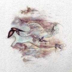 Junius Venant - Floating Harmonies