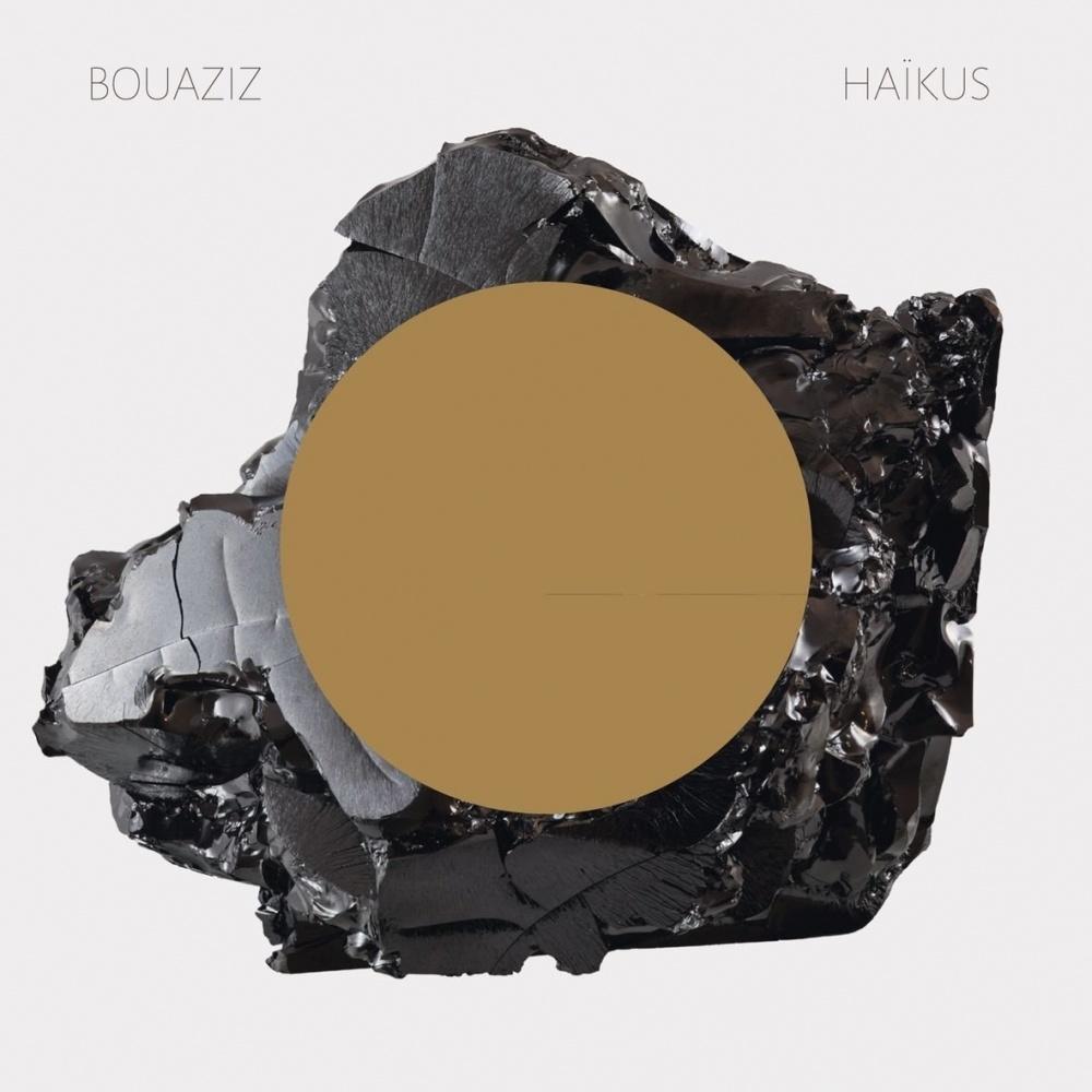 Pascal Bouaziz - Haïkus