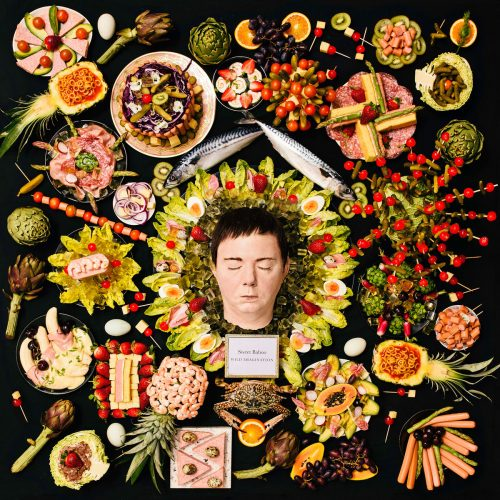 Sweet Baboo - Wild Imagination