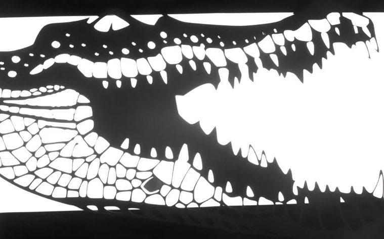 Quiet Dan - Crocodiles