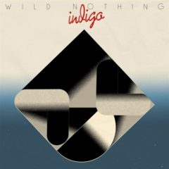 Wild Nothing - Indigo