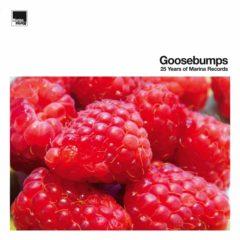 Marina Records - Goosebumps