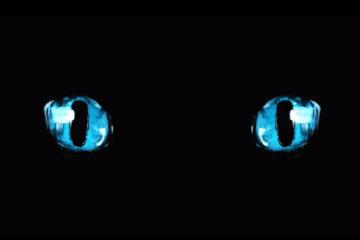 Octavio Mai - Yeux Turquoise