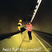 Angle mort & Clignotant - Code Pin