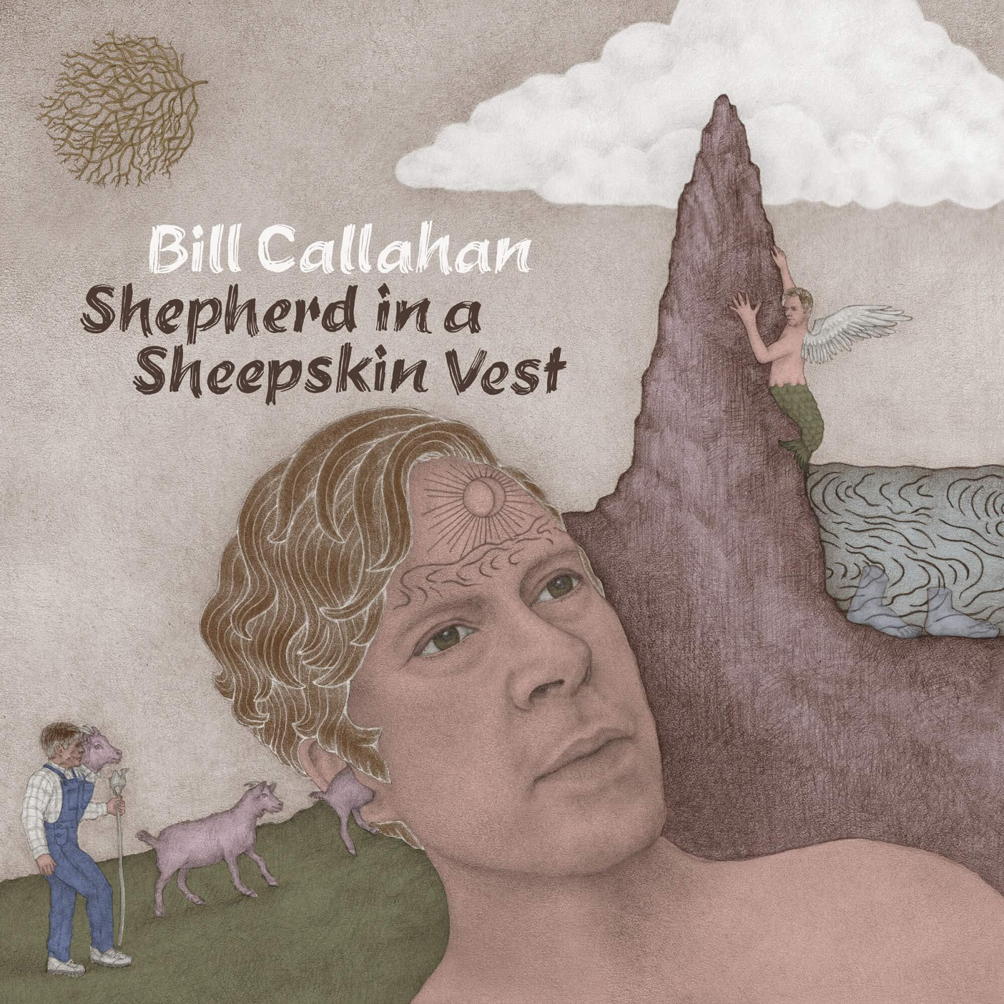 Bill Callahan - Shepherd In a Sheperdin Vest