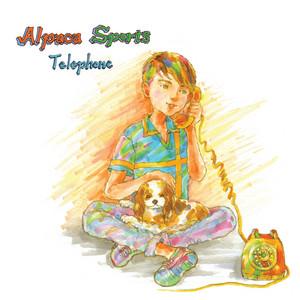 Alpaca Sports - Telephone