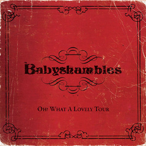 Babyshambles - Oh What A Lovely Tour – Babyshambles Live