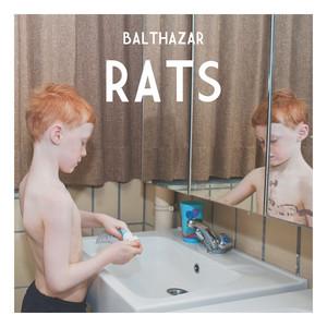 Balthazar - Rats