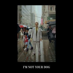 Baxter Dury - I'm Not Your Dog