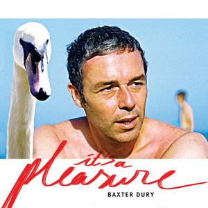 Baxter Dury - It's A Pleasure