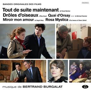 Bertrand Burgalat - Drôles D'oiseaux Et Autres Musiques De Films