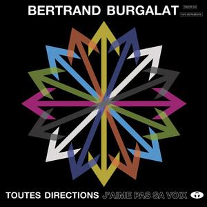 Bertrand Burgalat - Toutes Directions – J'aime Pas Sa Voix (instrumental)