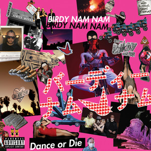 Birdy Nam Nam - Dance Or Die