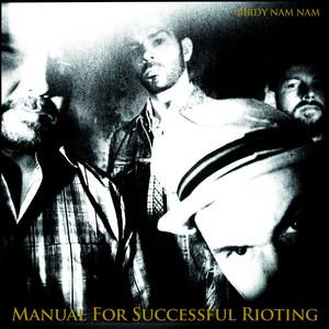 Birdy Nam Nam - Manual For Successful Rioting