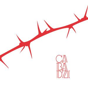 Cabadzi - Des Angles Et Des épines