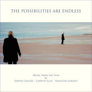 Edwyn Collins - The Possibilities Are Endless