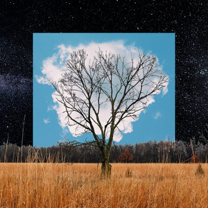 Fink - Bloom Innocent