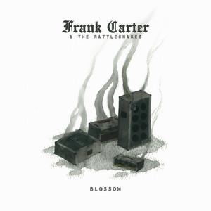 Frank Carter & the Rattlesnakes - Fire