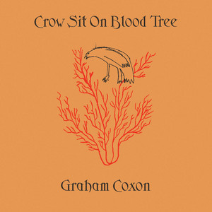 Graham Coxon - Crow Sit On Blood Tree