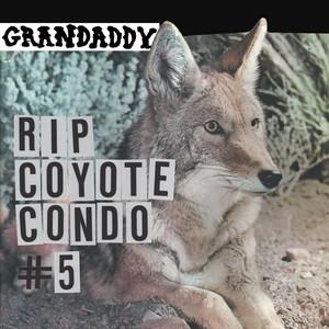 Grandaddy - Rip Coyote Condo #5