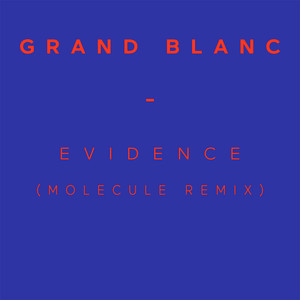 Grand Blanc - Evidence (molecule Remix)