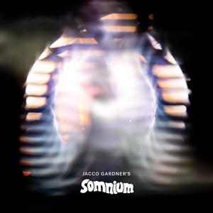 Jacco Gardner - Somnium