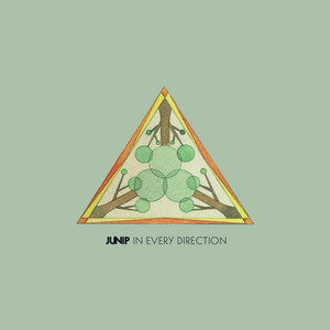 Junip - In Every Direction