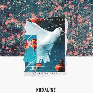 Kodaline - Saving Grace