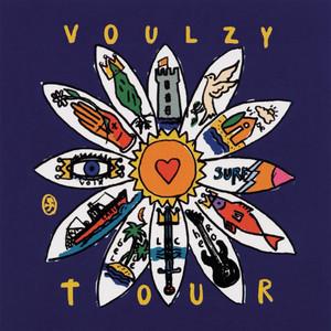 Laurent Voulzy - Voulzy Tour