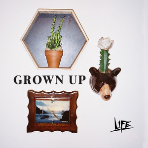 life - Grown Up