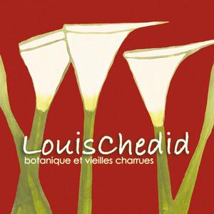 Louis Chedid - Botanique Et Vieilles Charrues (live)