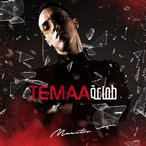 Maestro - Temaa